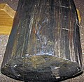Ebony wood 7 (27440137150).jpg
