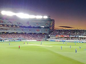 Eden Park at Dusk, 2013, cropped.jpg