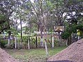 Edificaciones junto a la Brecha Husteca en El Sapote 1 - panoramio.jpg