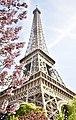Eiffel Tower in Spring.jpg