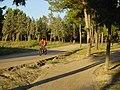 En bici por el parque forestal de entrevías (13).jpg