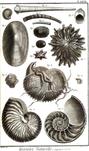 Encyclopedie volume 5-122.png