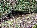Entrée de la grotte d'Andelnans.jpg