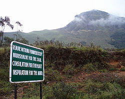 Eravikulam National Park.jpg