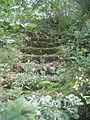 Escalier-niort.JPG