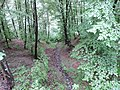 Ezeroto protected area, Bulgaria 03.JPG