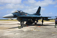 F-2A (520) of 6 Sqn at Andersen Air Force Base, -12 Feb. 2010 b.jpg
