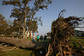 FEMA - 9051 - Photograph by Andrea Booher taken on 09-26-2003 in Virginia.jpg