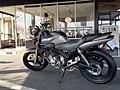 FZX250 ZeaL フロストシルバー2.jpg