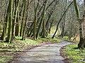 Farm road, Upper Vicar's Farm, Lewknor - geograph.org.uk - 743080.jpg