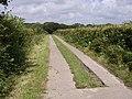 Farm road to Braddon - geograph.org.uk - 488345.jpg