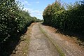 Farm track at Croxton Kerrial - geograph.org.uk - 999417.jpg