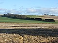 Farmland, Park Down Farm - geograph.org.uk - 292659.jpg