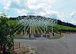 Fellbach Belvedere
