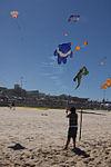 Festival of the Winds (7960186000).jpg