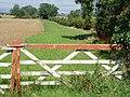 Field Edge - geograph.org.uk - 536551.jpg