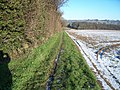 Field edge path - geograph.org.uk - 1639816.jpg