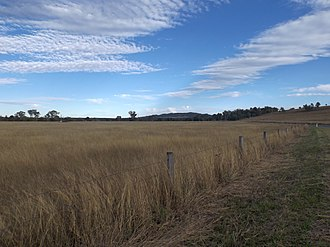Mount Mort, Queensland - Fields along Grandchester Mount Mort Road, 2015