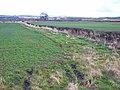 Fields at Lumley Moor Farm - geograph.org.uk - 352186.jpg