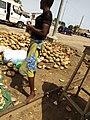 Fille enlevant la peau d'une noix de coco pour servir un client à Porto Novo-Bénin.jpg