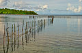 Fish trap, Pango, Efate, Vanuatu, April 2008 - Flickr - PhillipC (1).jpg