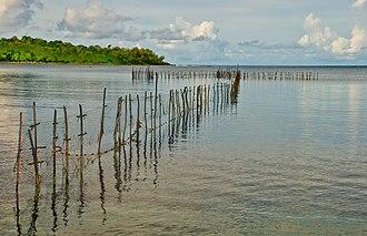 Fishing in Vanuatu - Fish trap, Pango, Efate