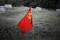 Flag (4770416043).jpg