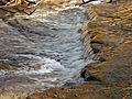 Flickr - Nicholas T - Hogback Ridge Park (6).jpg
