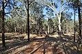 Flinders Ranges SA 5434, Australia - panoramio (117).jpg