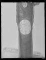 Flintlåspistol, Hans Zimmerman, silverbeslag troligen av Daniel Schwarzkopf - Livrustkammaren - 53788.tif
