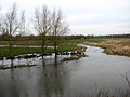 Flooded fields - geograph.org.uk - 667295.jpg