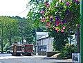 Flowers and trams (42735493405).jpg