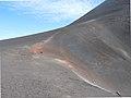 Fogo-Pico Pequeno (5).jpg