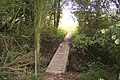 Footbridge in Brotherhood Wood - geograph.org.uk - 1521030.jpg