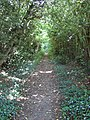 Footpath, Bellingdon - geograph.org.uk - 188695.jpg