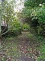 Footpath - Rodley Lane, Rodley - geograph.org.uk - 1035011.jpg
