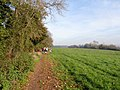 Footpath along Wotton Hill - geograph.org.uk - 273596.jpg
