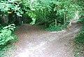 Footpath and bridleway junction near Shoreham - geograph.org.uk - 940963.jpg