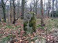 Forest Boundary Stone - geograph.org.uk - 353582.jpg