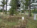 Fort Yellowstone Cemetery Headstones11.JPG
