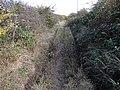 Fox's Drove - geograph.org.uk - 1560181.jpg
