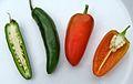 Fresno pepper 5.jpg