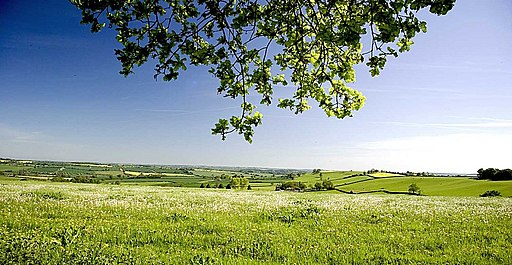 From Everdon Stubbs - geograph.org.uk - 1871636