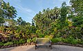 Front view of a wooden outdoor bench in Singapore Botanic Gardens with plants in sunshine and blue sky.jpg