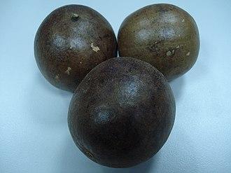 Siraitia grosvenorii - Siraitia grosvenorii (luohan guo) fruits