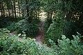 Fußweg Felsengarten Sanspareil 04082019 032.jpg
