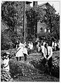 Garden Crops, Production and Preservation 002 One of the first school gardens in America.jpg