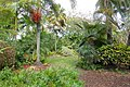 Garden view - Mounts Botanical Garden - Palm Beach County, Florida - DSC03713.jpg
