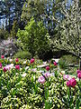 Gardens28.jpg