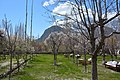 Gardens at Shigar Fort.jpg